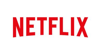 Netflix - IP Report